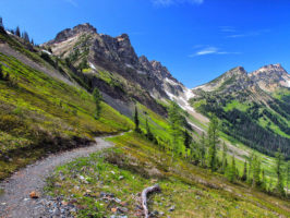 Hiking Spots in the USA